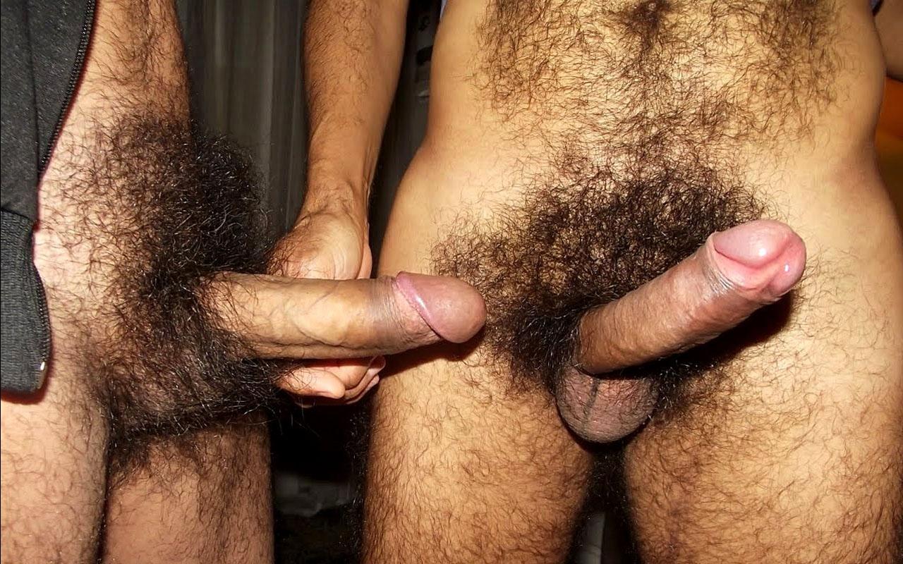 Большие волосатые члены гей порно фото 272-425